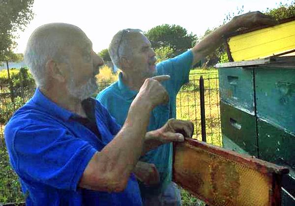 Manfred und Thierry und ihre Liebe zu Bienenstöcken